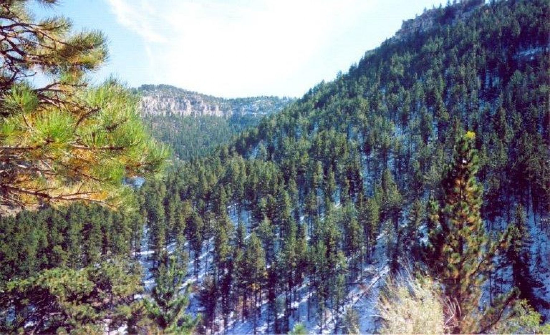 Image of Casper Mtn
