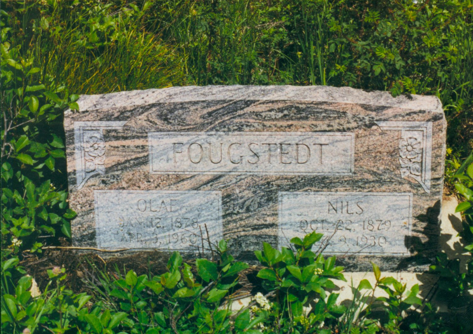 Image of Fougstedt Graves