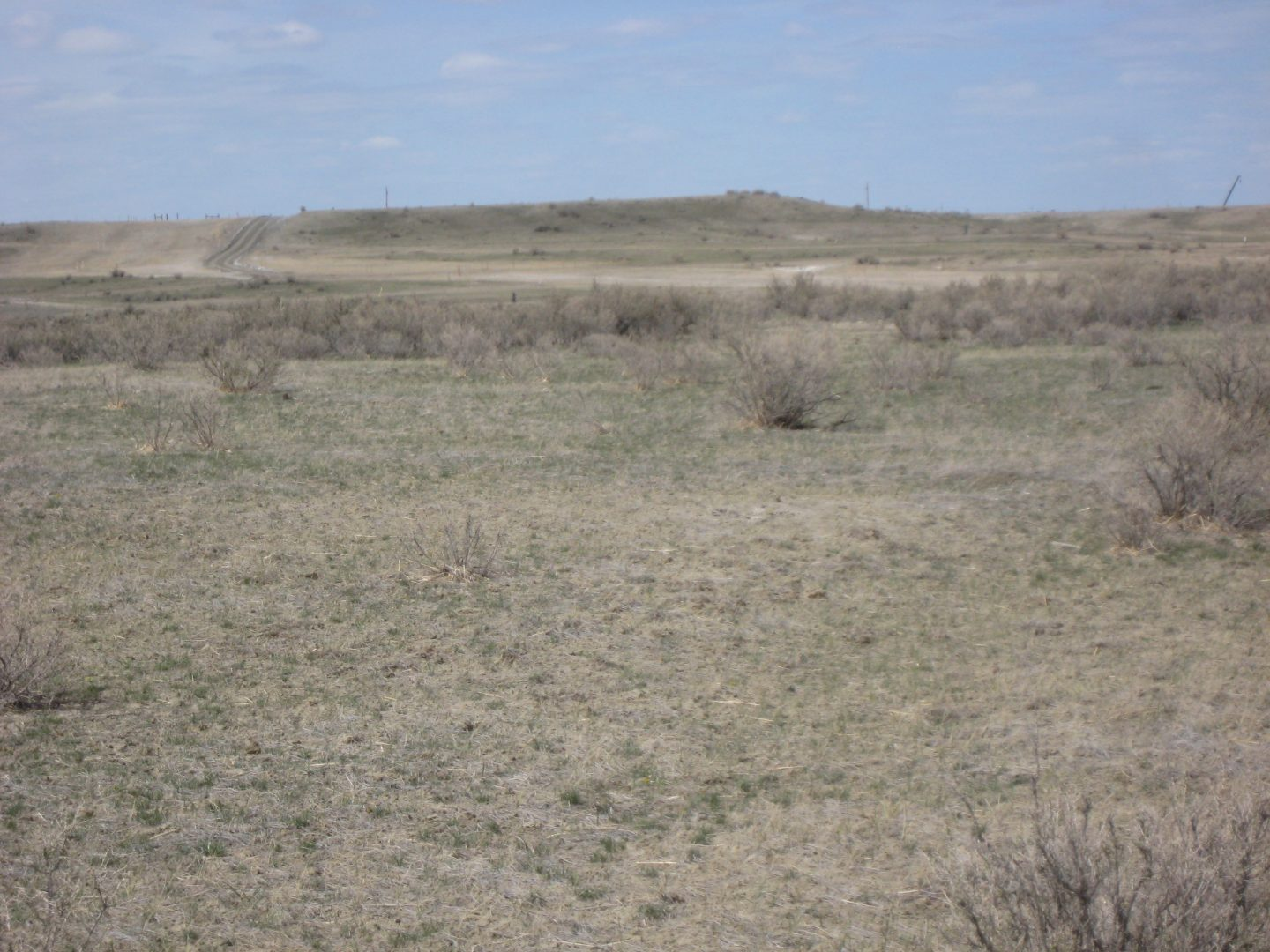 Image of Salt Creek town site
